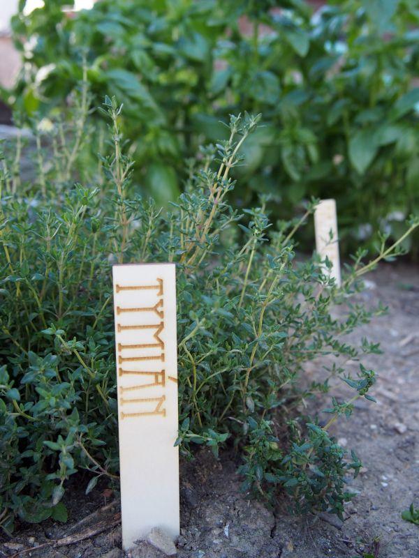 Zápichy k bylinkám dřevěné 10ks