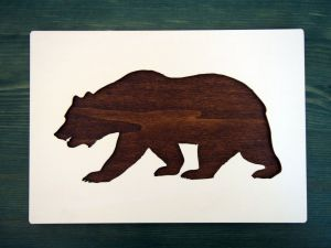 medvěd tmavý